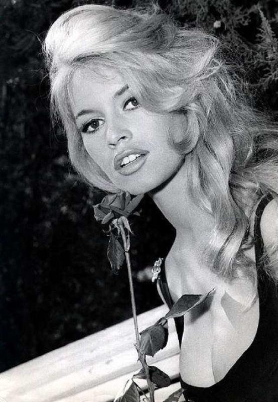Brigitte Bardot95