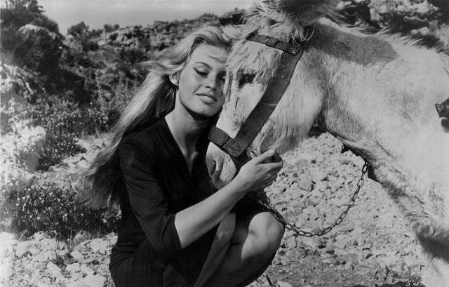 Brigitte Bardot49