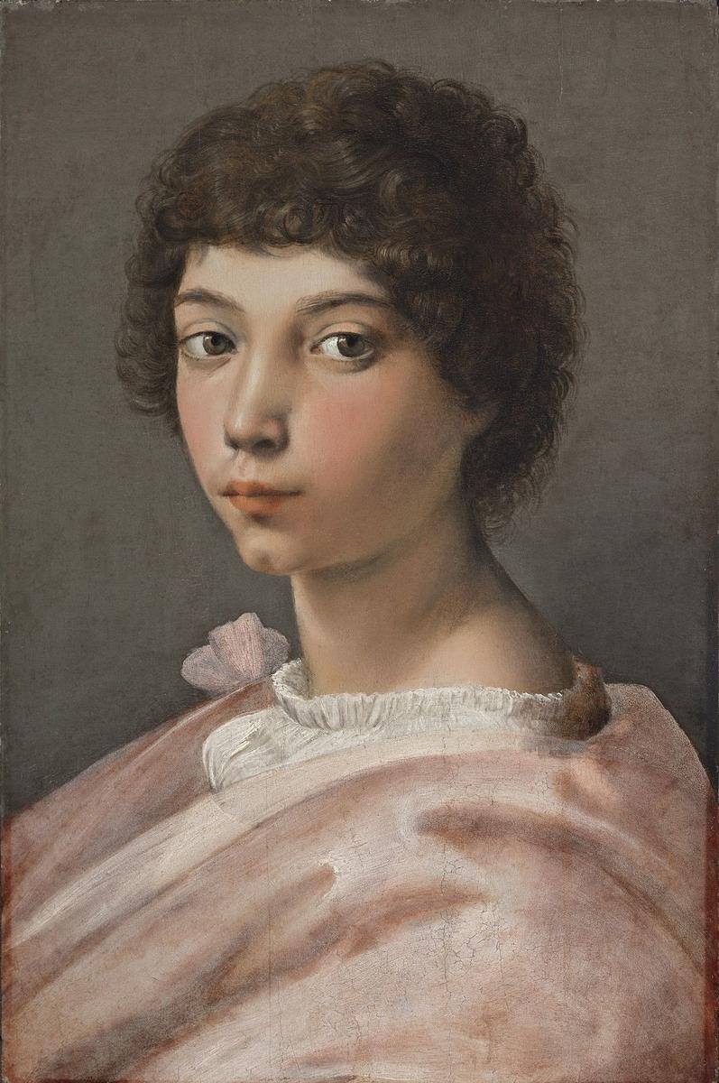 Museo de Arte Thyssen-Bornemisza Portrait of a Young Man  circa 1518-1519