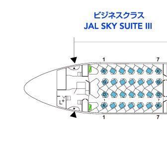 JALインドデリー便特典航空券
