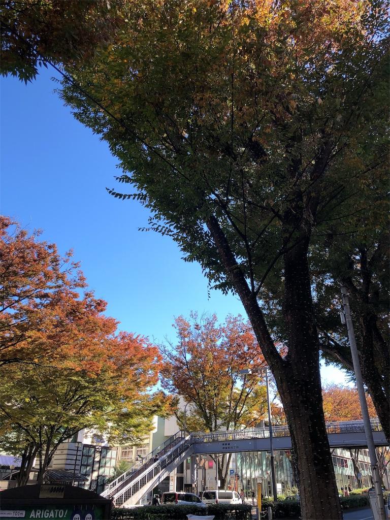 f:id:hitomihoshimi:20181115094912j:image