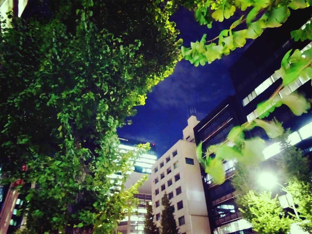 f:id:hitomihoshimi:20181130234017j:image