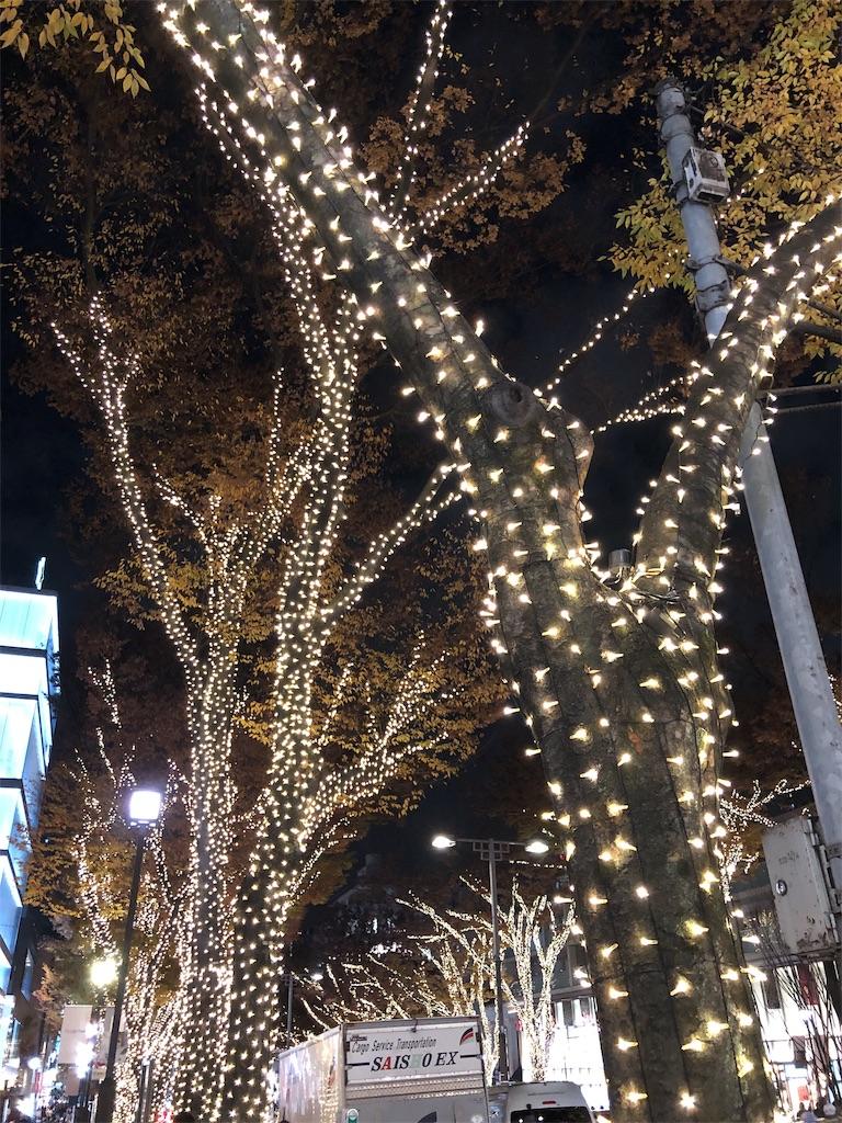 f:id:hitomihoshimi:20181201000715j:image
