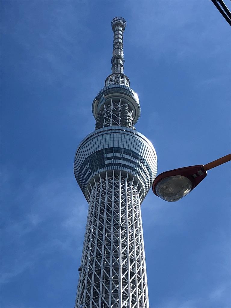 f:id:hitomihoshimi:20181204135522j:image