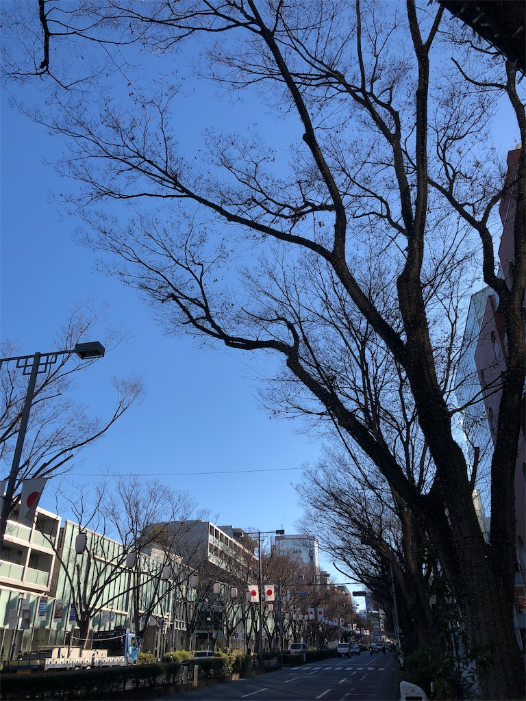 f:id:hitomihoshimi:20181229100116j:image