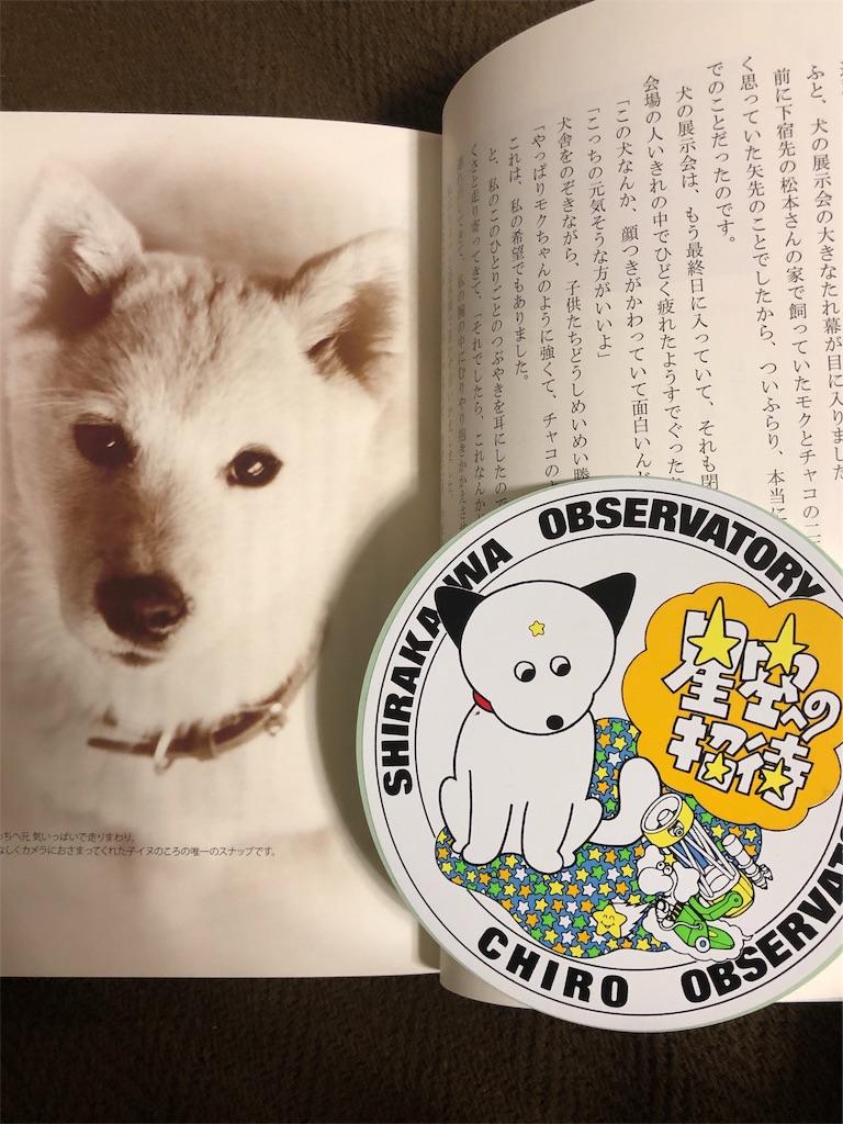 f:id:hitomihoshimi:20190202231613j:image