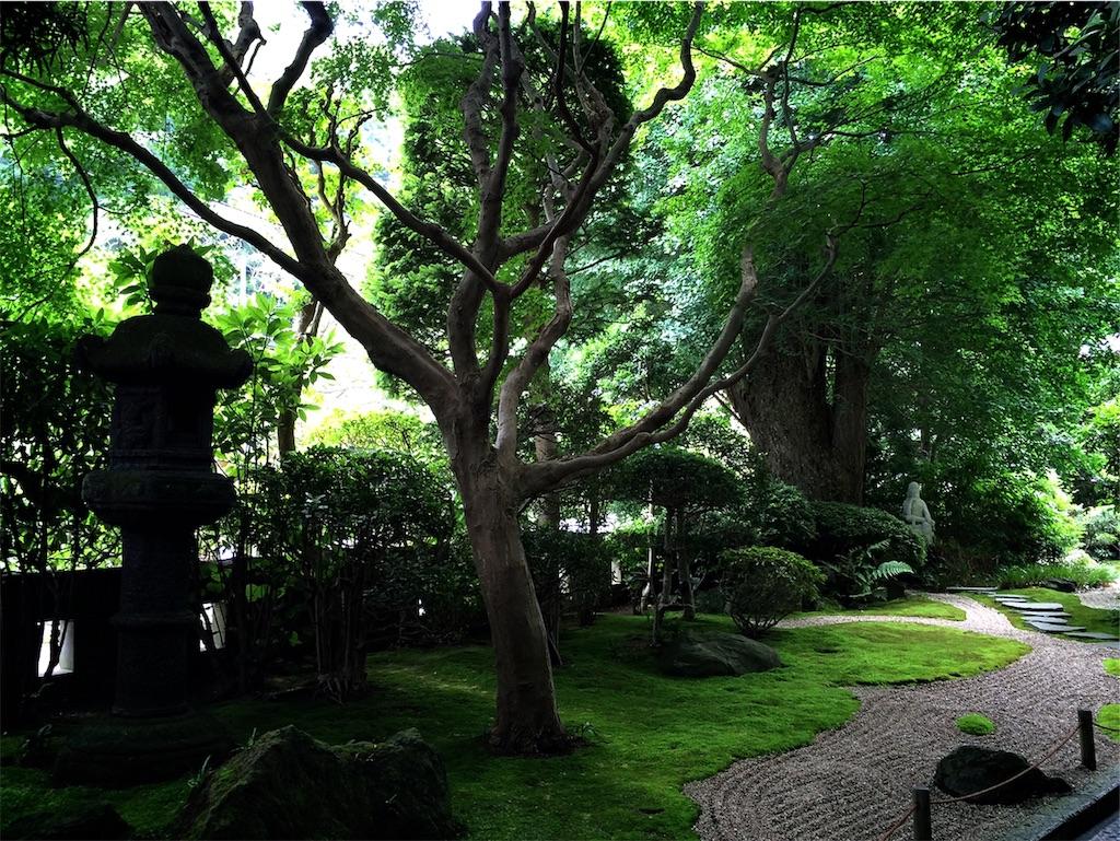 f:id:hitomihoshimi:20190216084807j:image