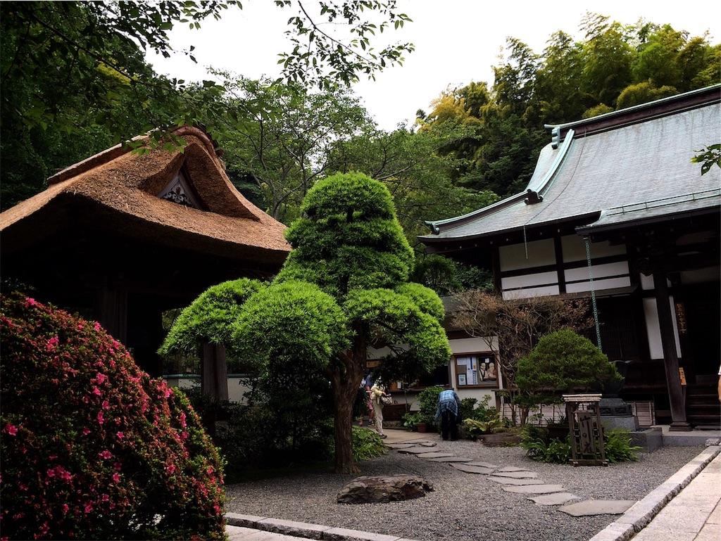 f:id:hitomihoshimi:20190216084830j:image