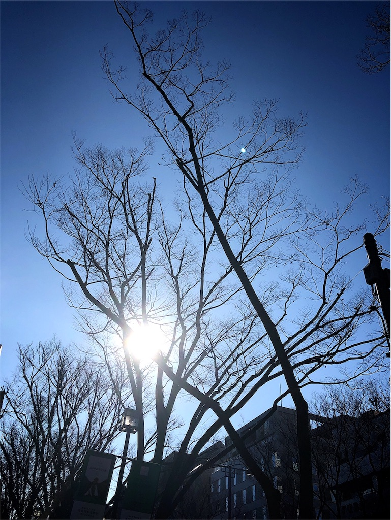 f:id:hitomihoshimi:20190218095757j:image