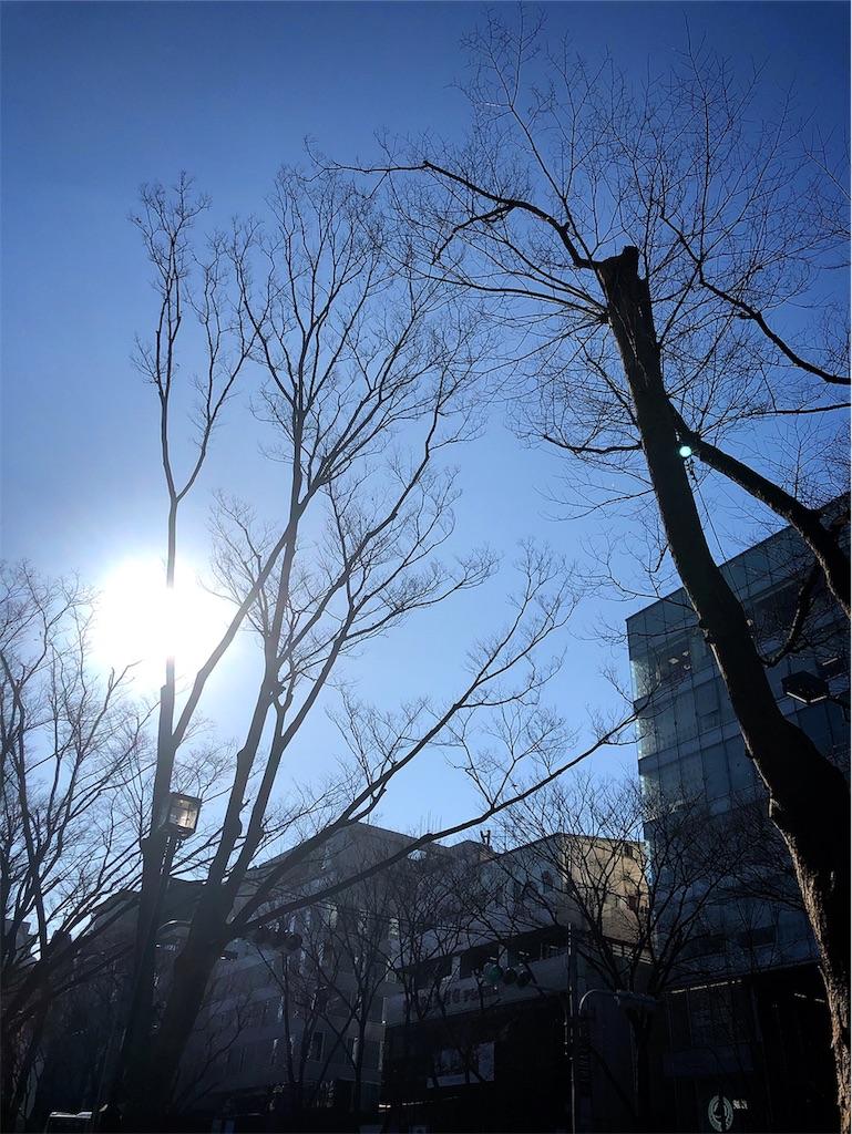 f:id:hitomihoshimi:20190218095805j:image