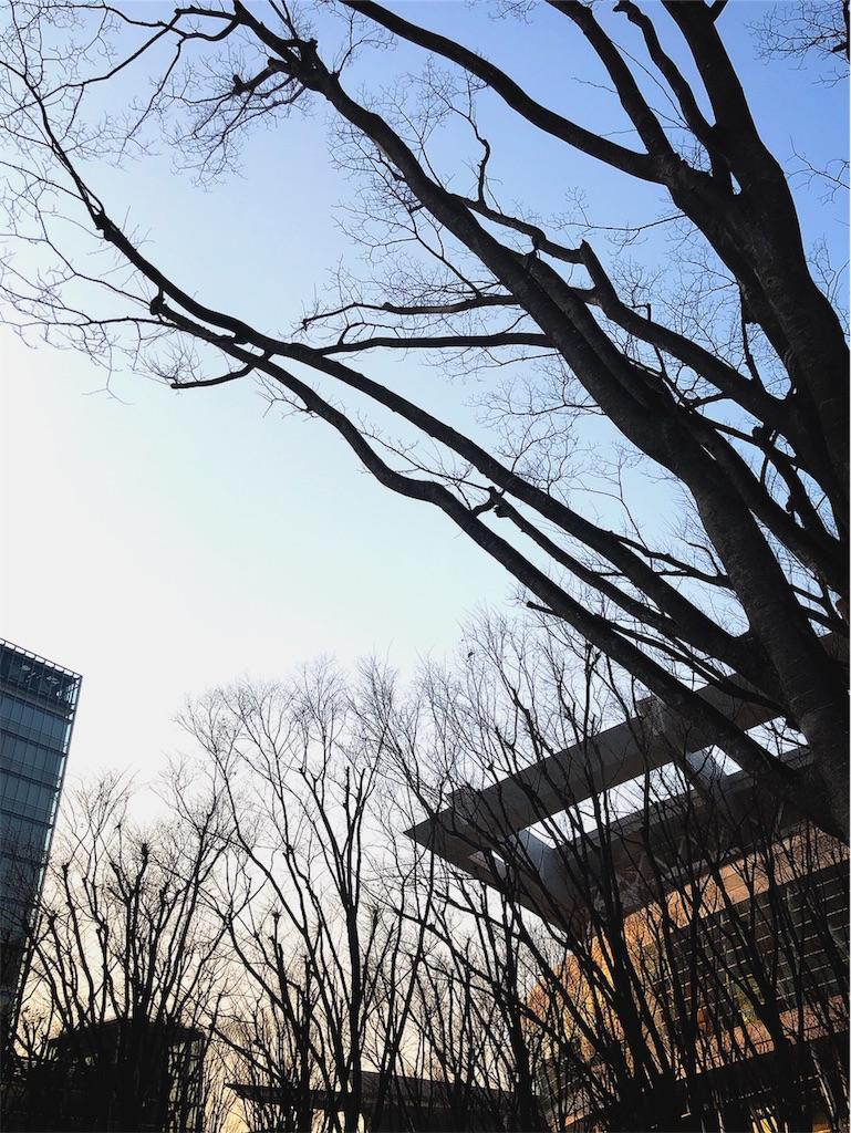 f:id:hitomihoshimi:20190226165437j:image