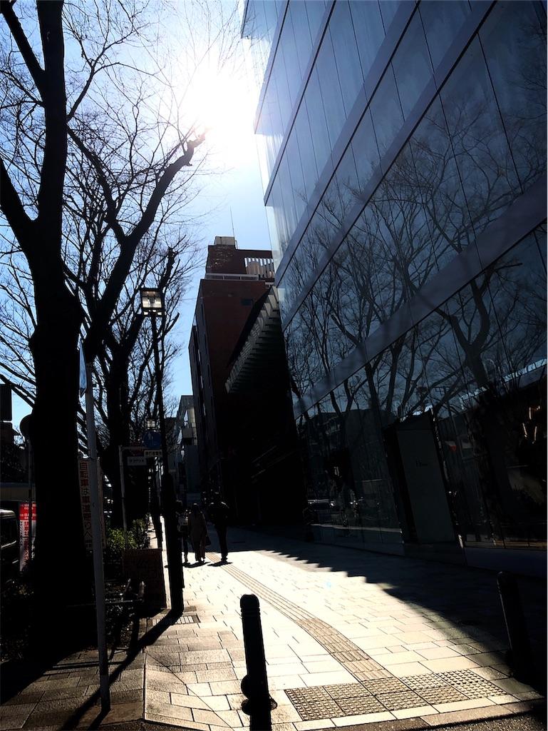 f:id:hitomihoshimi:20190314092506j:image