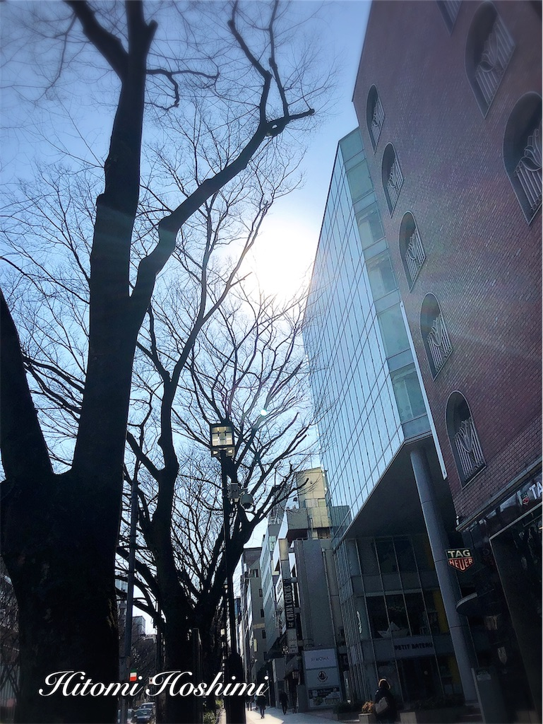 f:id:hitomihoshimi:20190317092117j:image