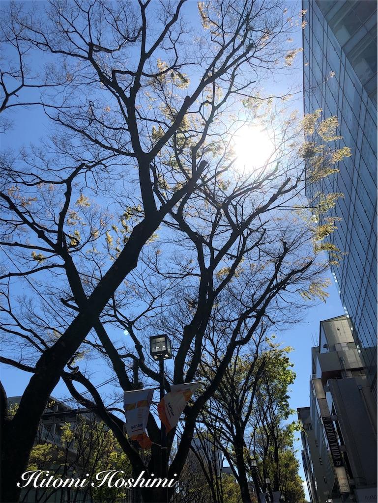 f:id:hitomihoshimi:20190418090731j:image