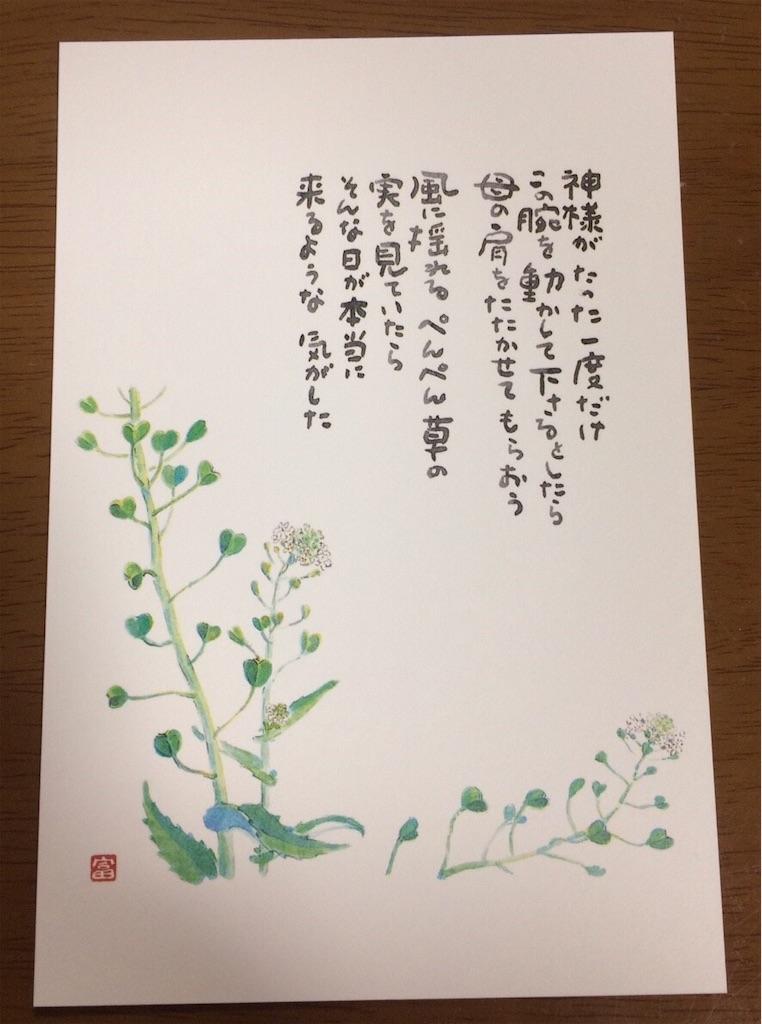 f:id:hitomihoshimi:20190427083058j:image