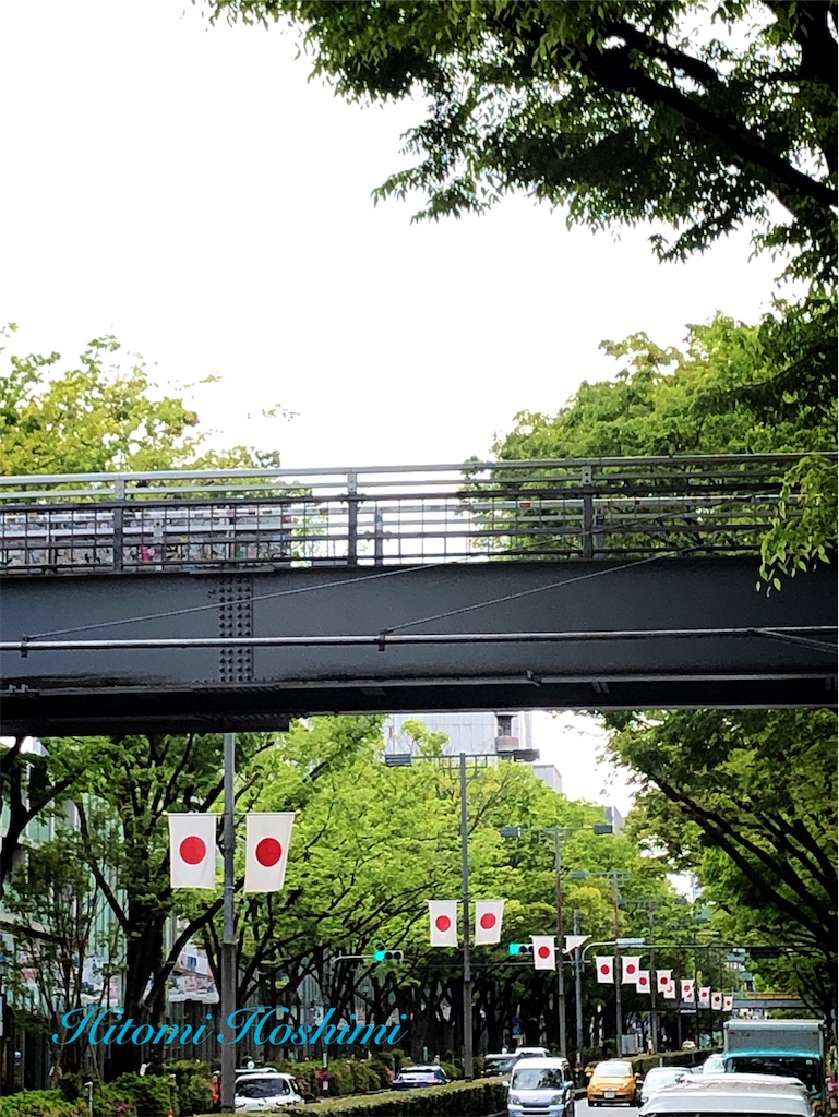 f:id:hitomihoshimi:20190501092620j:image