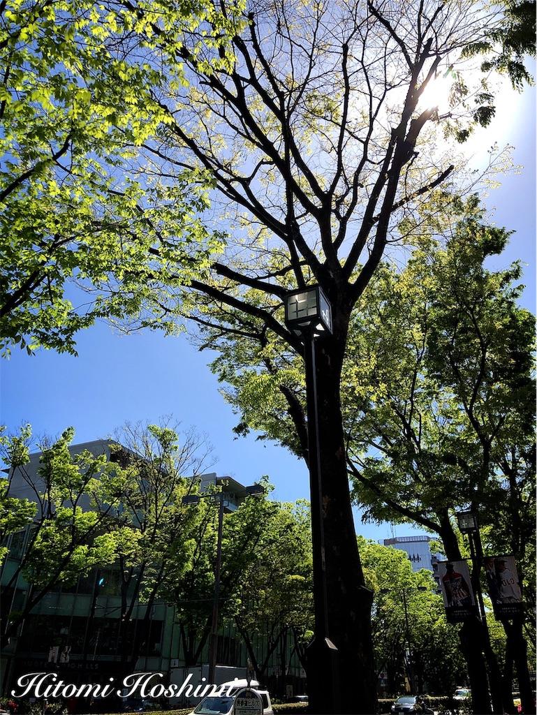f:id:hitomihoshimi:20190502084256j:image