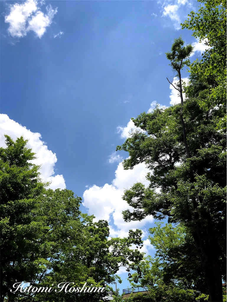 f:id:hitomihoshimi:20190530150423j:image