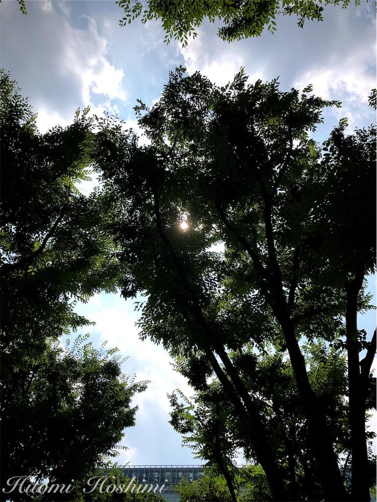 f:id:hitomihoshimi:20190730153634j:image