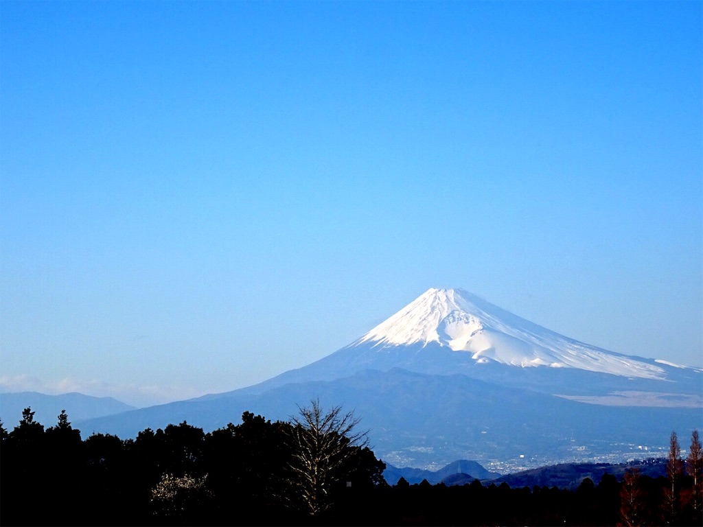 f:id:hitomihoshimi:20200206101536j:image