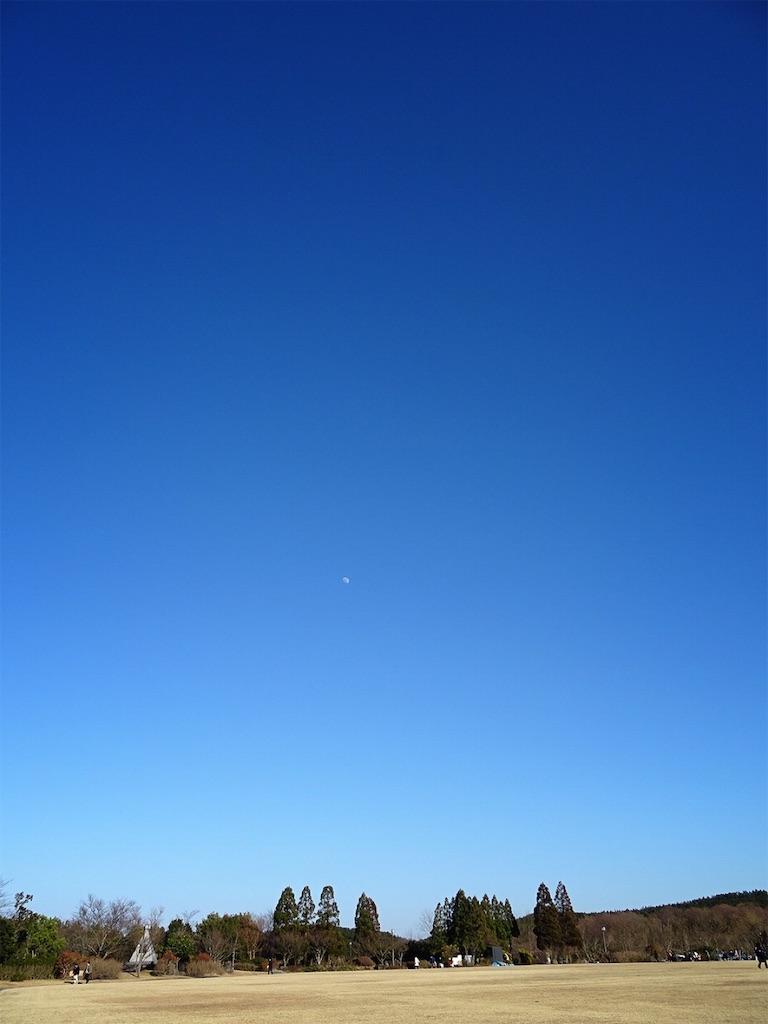 f:id:hitomihoshimi:20200206101711j:image