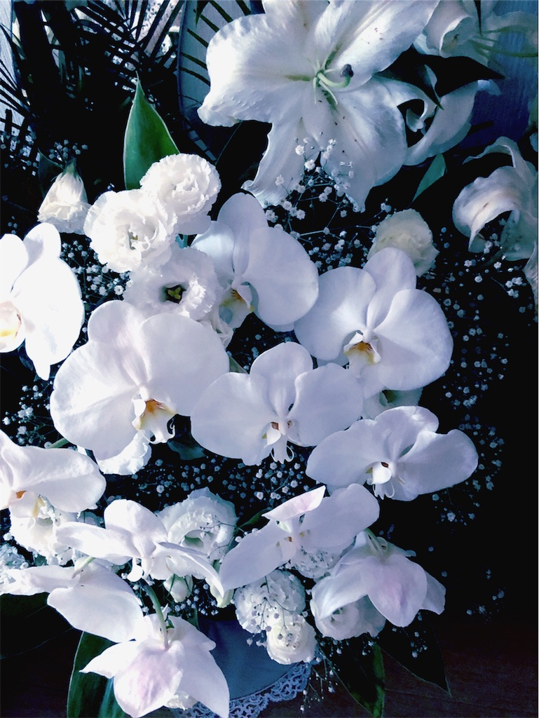 f:id:hitomihoshimi:20200522172259j:image