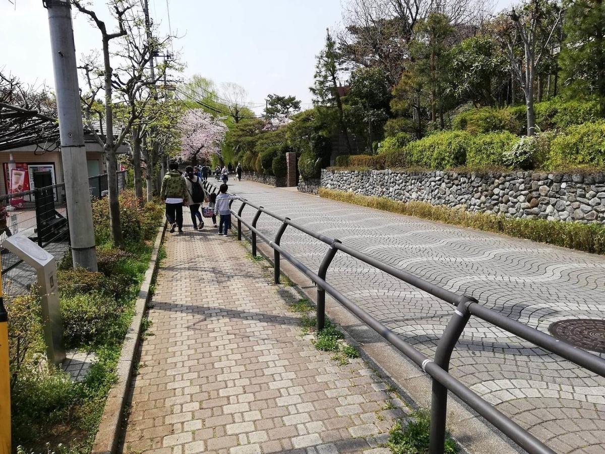 石神井池の外周道路の写真