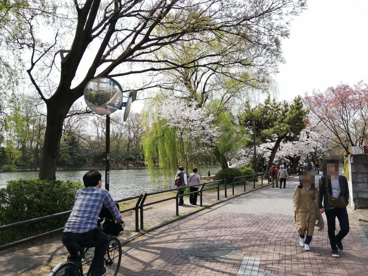 『石神井公園』の石神井池沿い写真