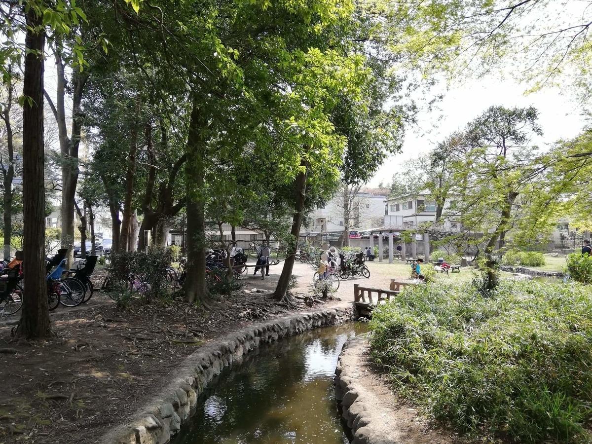 『石神井公園』の三宝寺池近くの園内写真