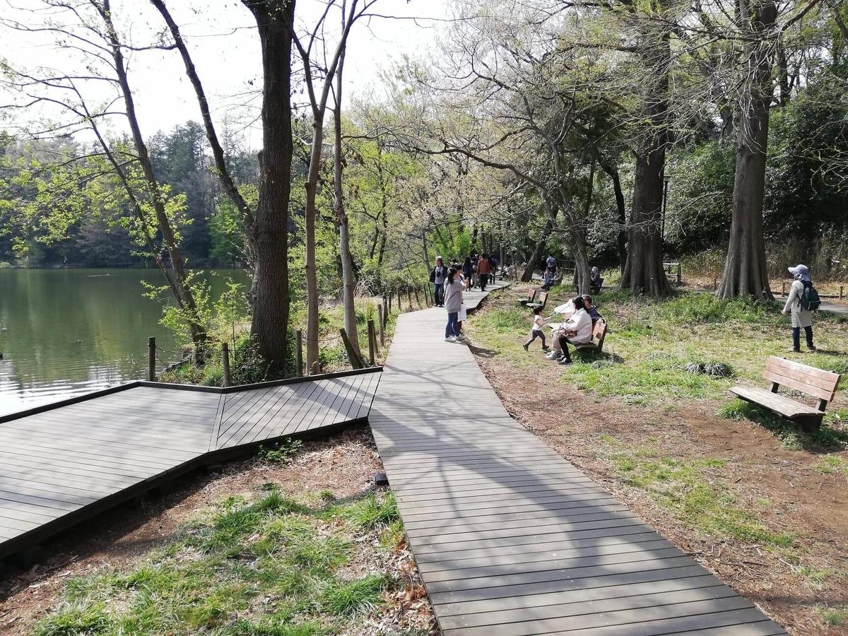 『石神井公園』の三宝寺池沿いの写真