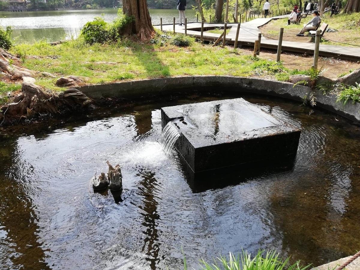 『石神井公園』の三宝寺池沿いにある石垣の写真