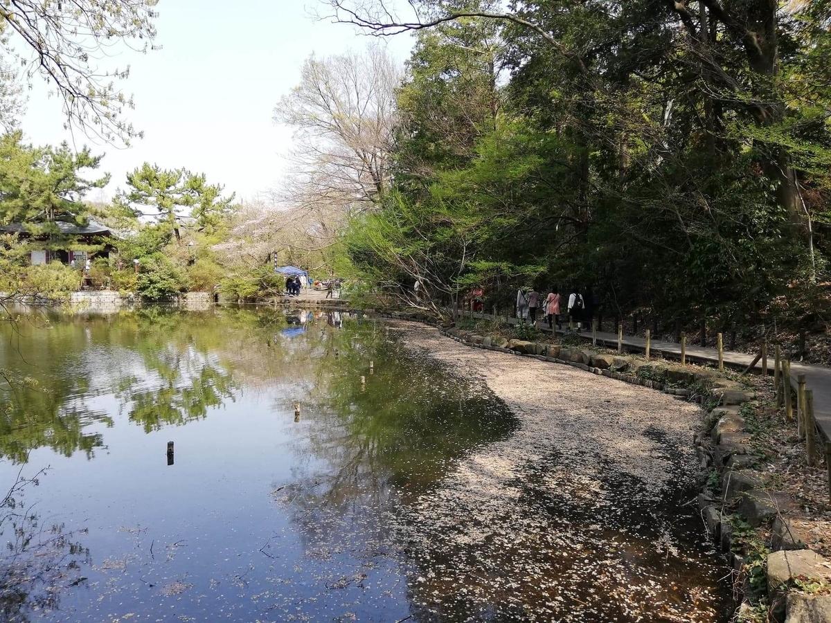 『石神井公園』の三宝寺池の外周写真