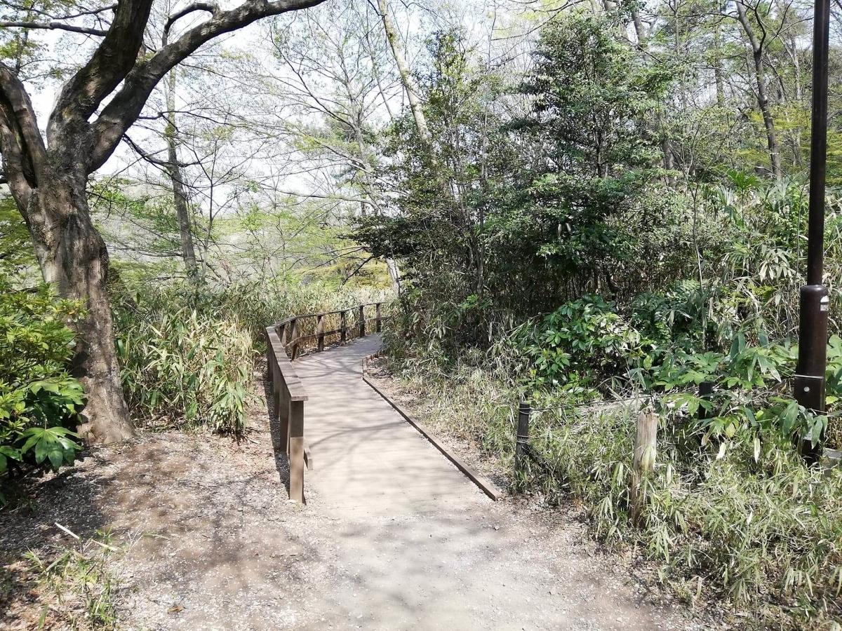 『石神井公園』の三宝寺池園内の写真