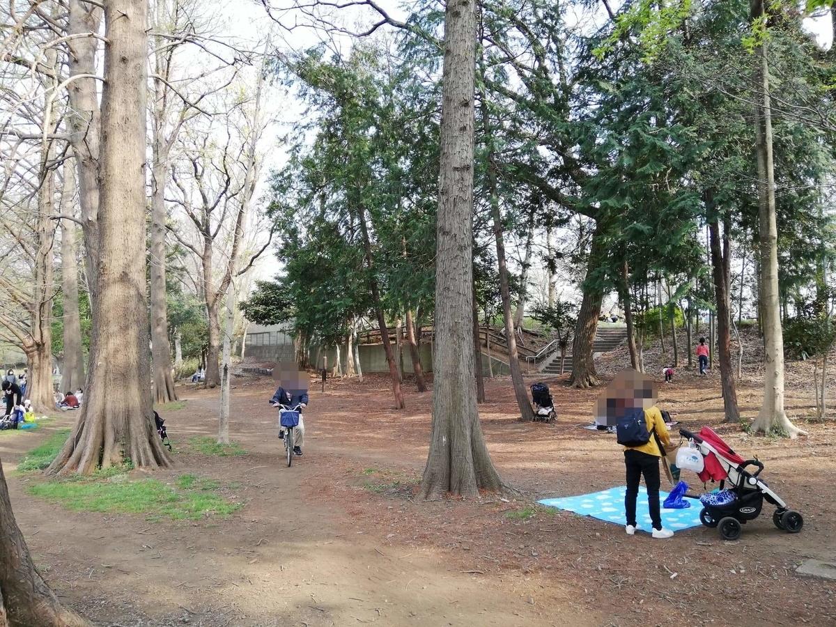 『石神井公園』の石神井池沿いにある林の写真
