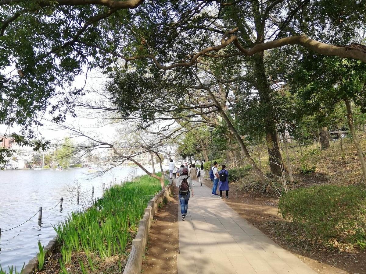 『石神井公園』の石神井池沿いの写真