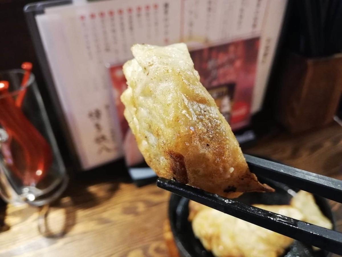 長野県松本市『松本つなぐ横丁』内の『博多鉄八』の博多鉄鍋餃子を箸で掴んでいる写真