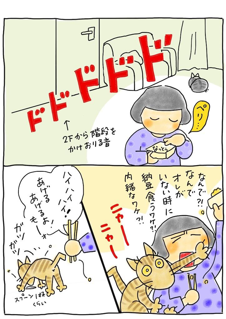 f:id:hitori-jikan:20210108092502j:image