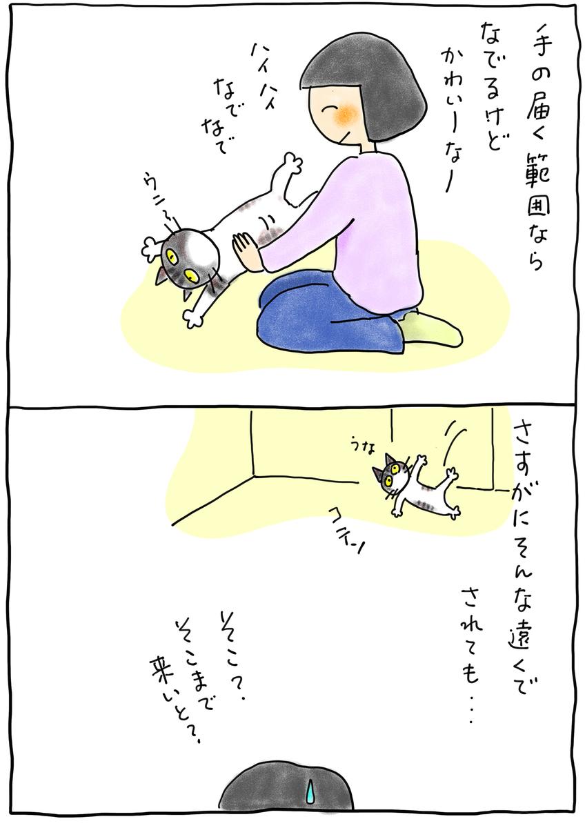 f:id:hitori-jikan:20210220211133j:plain