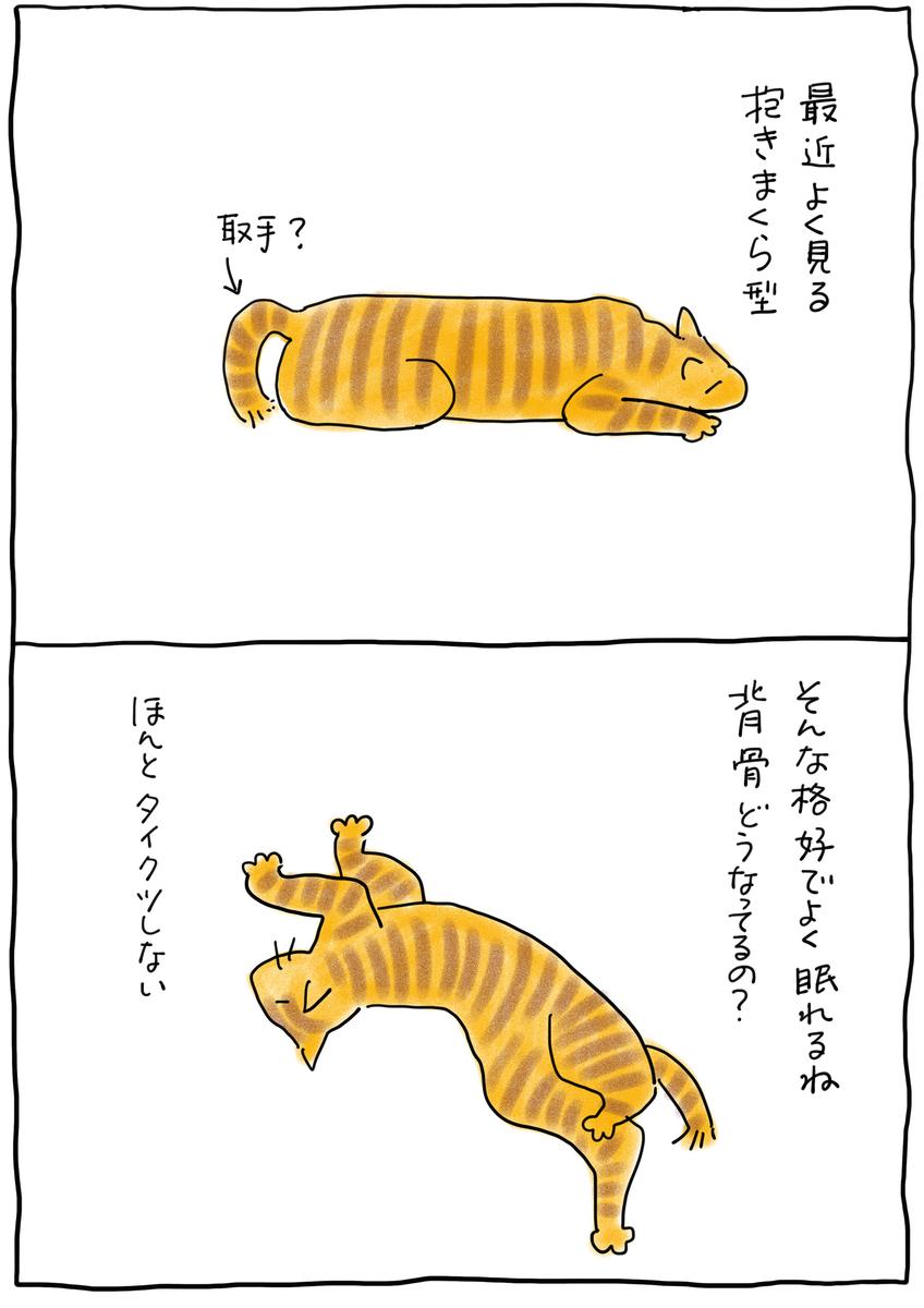 f:id:hitori-jikan:20210502144233j:plain