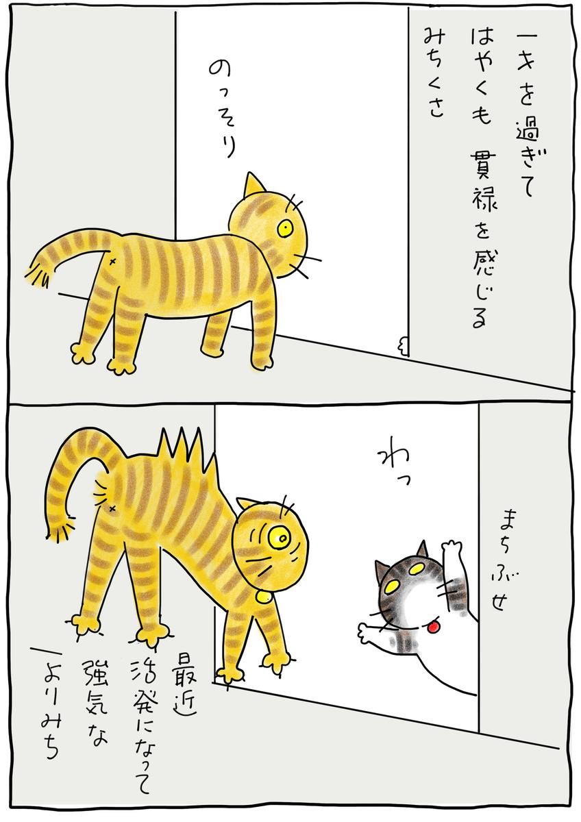 f:id:hitori-jikan:20210505105036j:plain