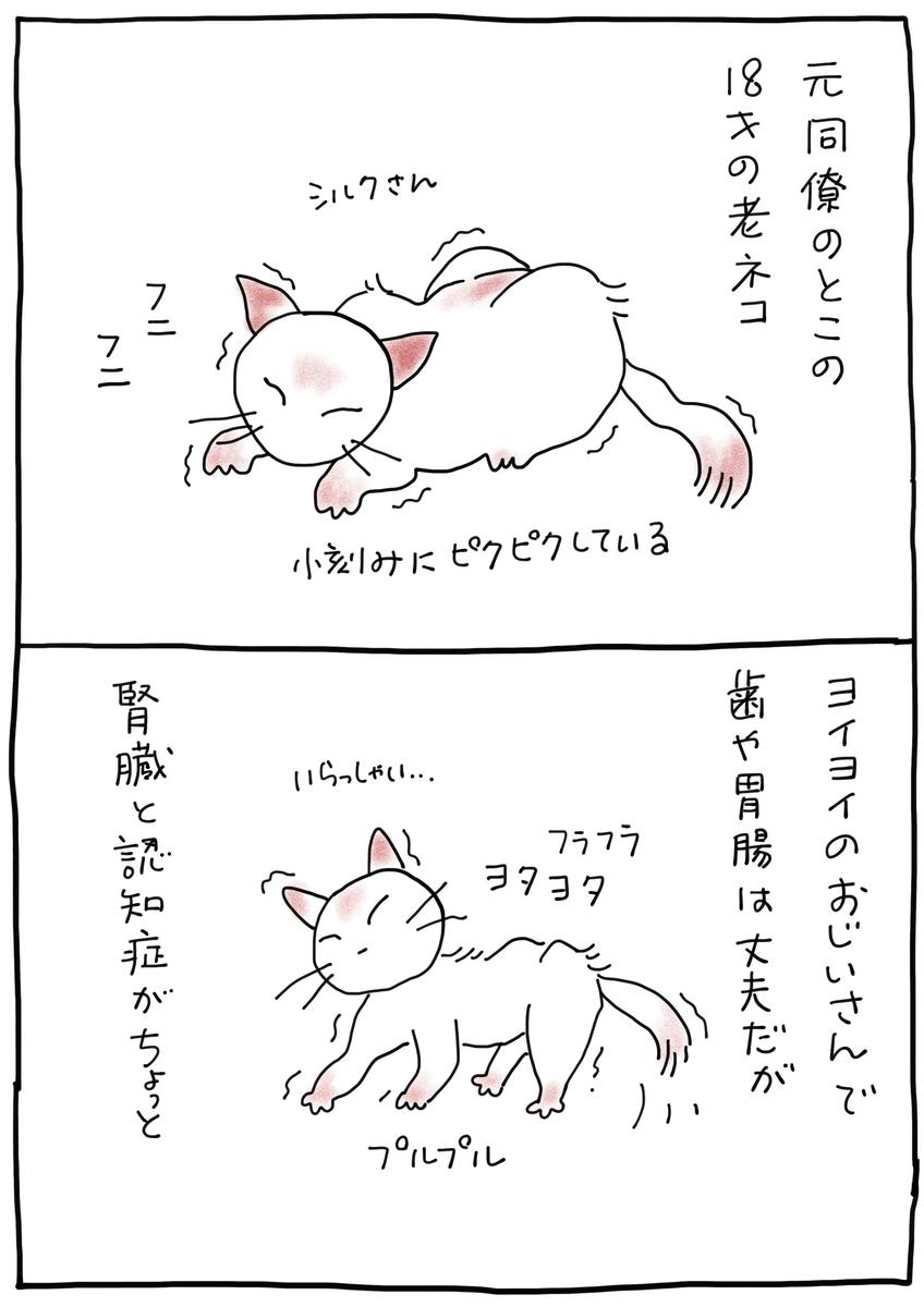 f:id:hitori-jikan:20210506143641j:plain