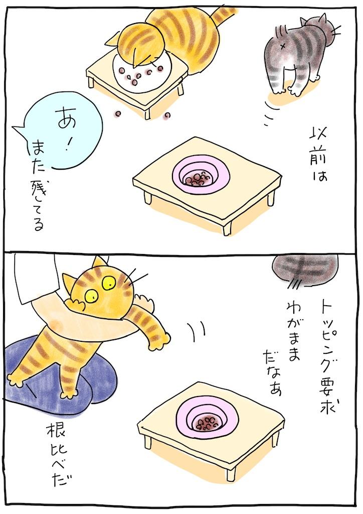 f:id:hitori-jikan:20210709075354j:image