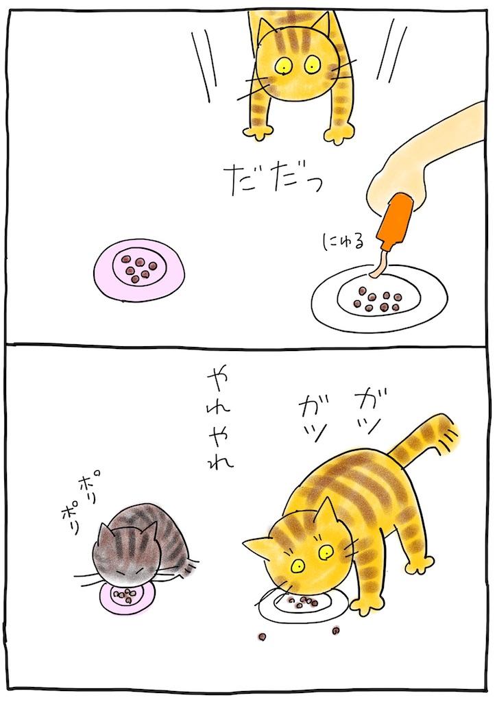 f:id:hitori-jikan:20210715082545j:image