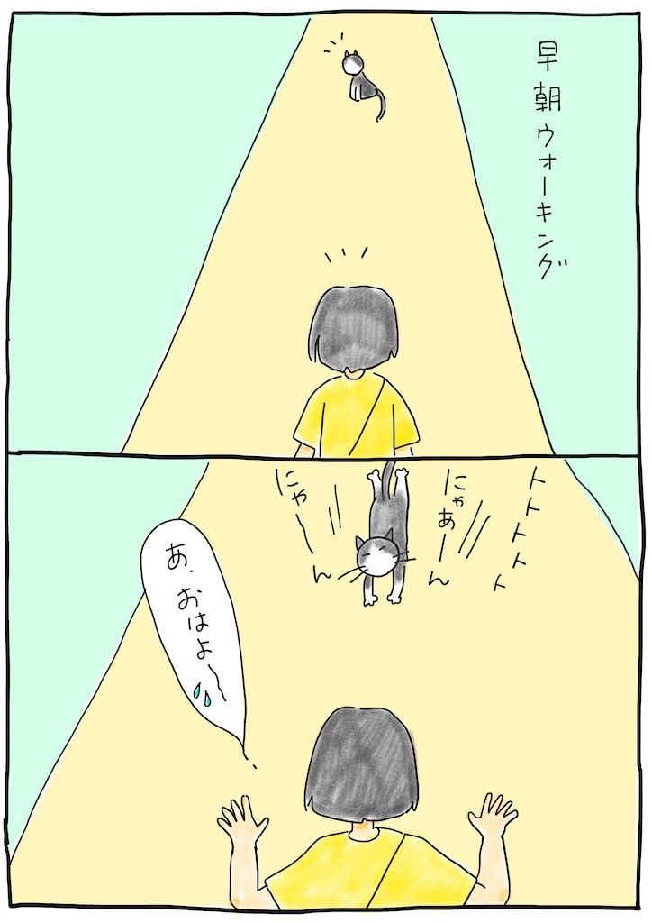 f:id:hitori-jikan:20210729190436j:image