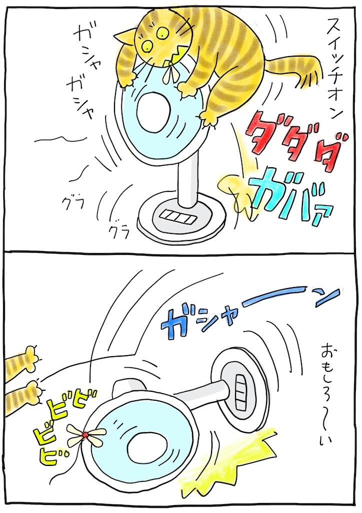 f:id:hitori-jikan:20210806102253j:image