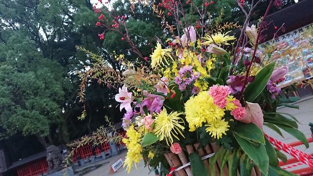 f:id:hitorinekotabi:20181020062519j:image