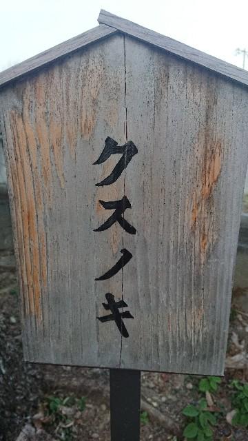 f:id:hitorinekotabi:20181129163601j:image