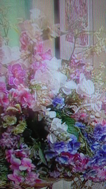 f:id:hitorinekotabi:20190320160337j:image