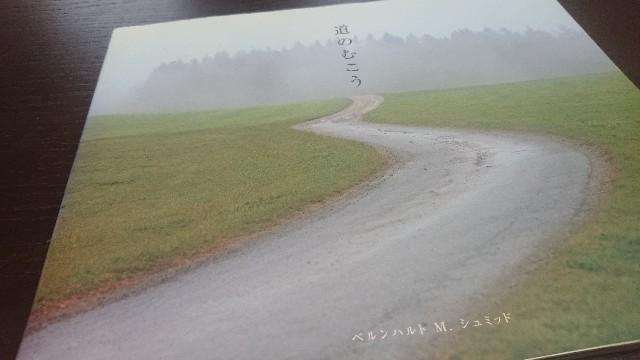 f:id:hitorinekotabi:20190321150307j:image