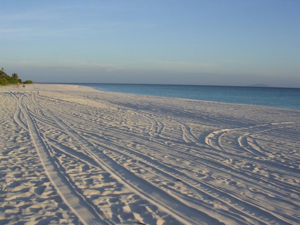 カートのタイヤ跡がついた砂浜